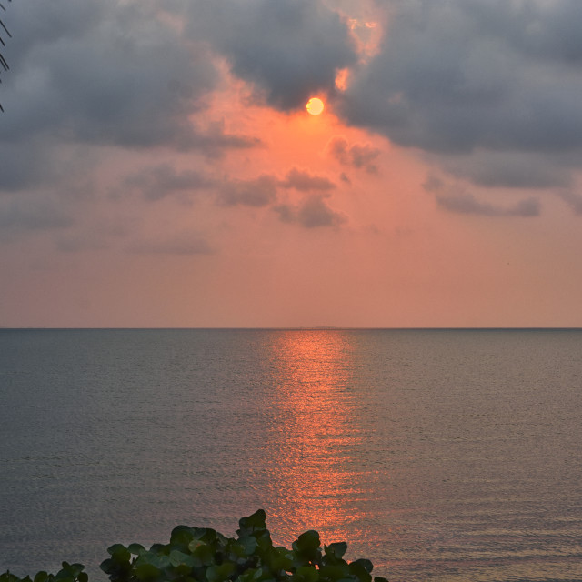 """""""Pink sunrise"""" stock image"""