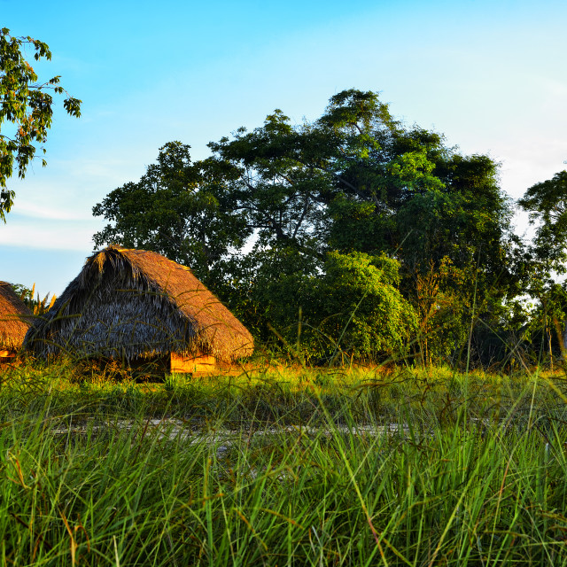 """""""Thatch buildings along the Sittee River"""" stock image"""
