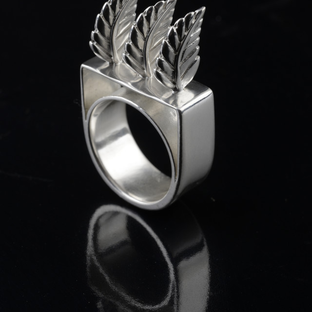 """""""Sterling silver ring by Kevin O'Dwyer"""" stock image"""
