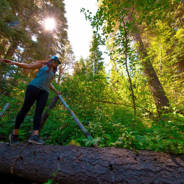 """""""hiker walking across fallen tree"""" stock image"""