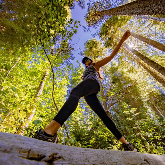 """""""Woman hiking - walking across fallen tree"""" stock image"""