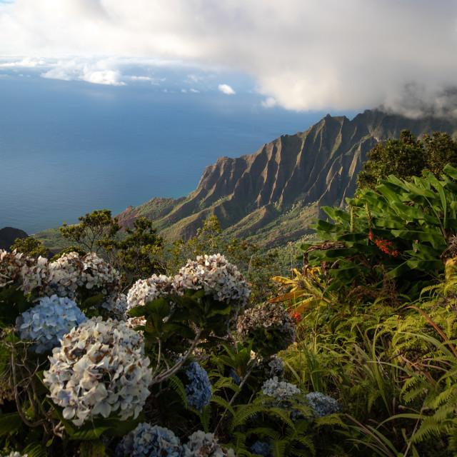 """Epic Kauai"" stock image"