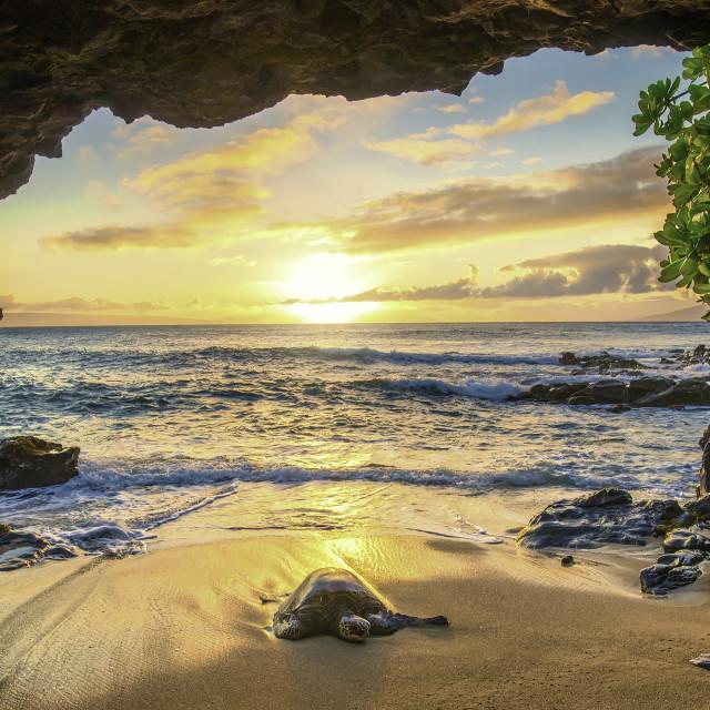 """Honu Cave Sunset"" stock image"