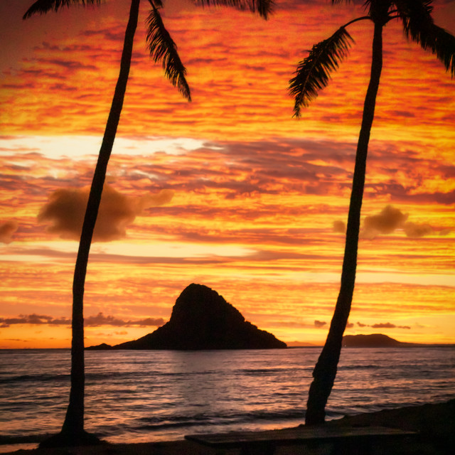 """""""Island at sunrise"""" stock image"""