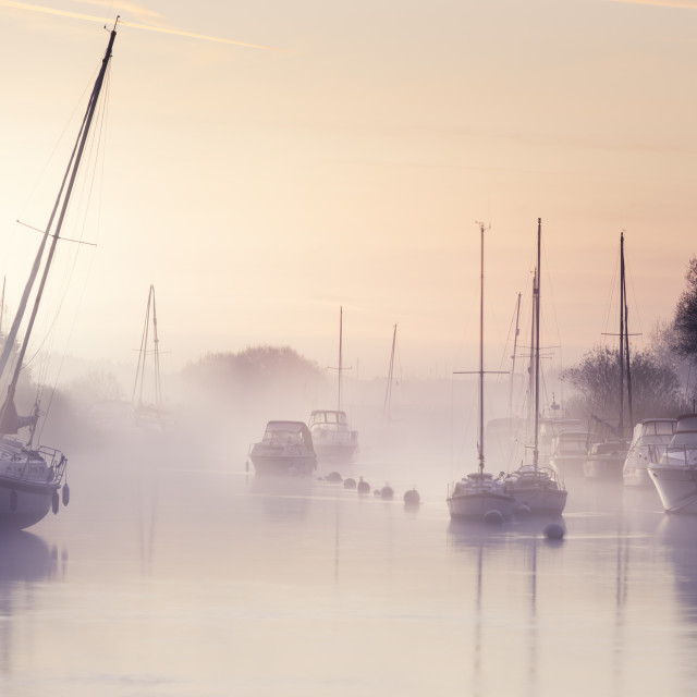 """""""River Frome"""" stock image"""