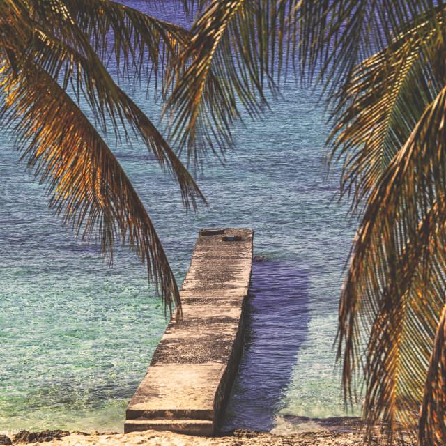 """Pier on tropical beach"" stock image"