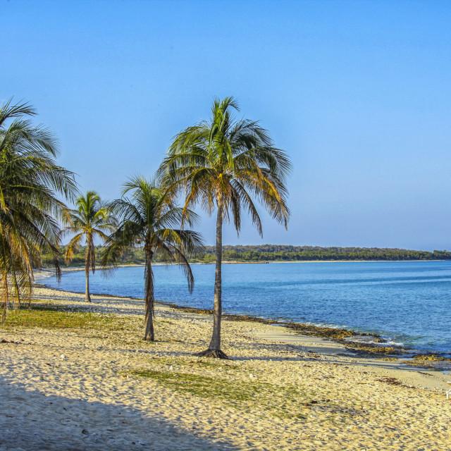 """Beach at Maria la Gorda"" stock image"
