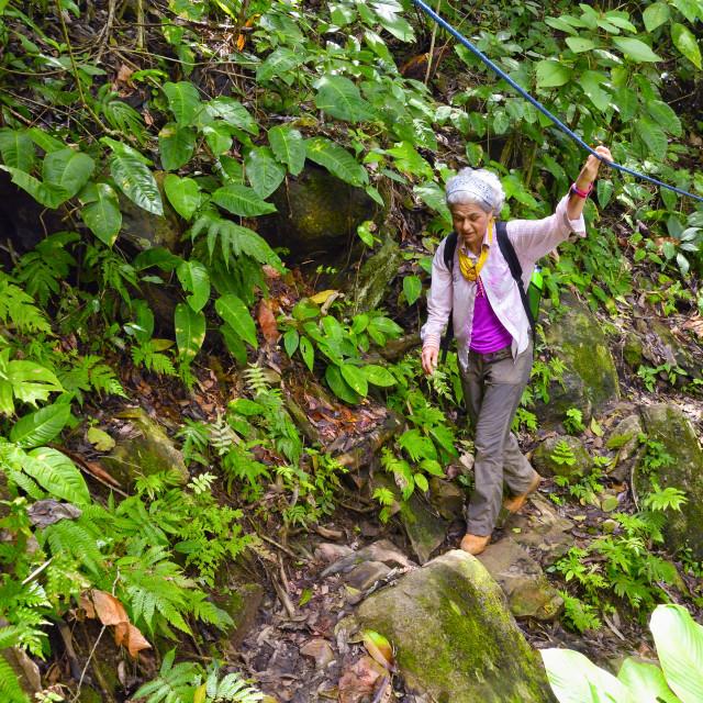 """""""Woman hiking along a jungle trail"""" stock image"""