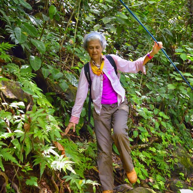 """Woman navigates a jungle trail"" stock image"