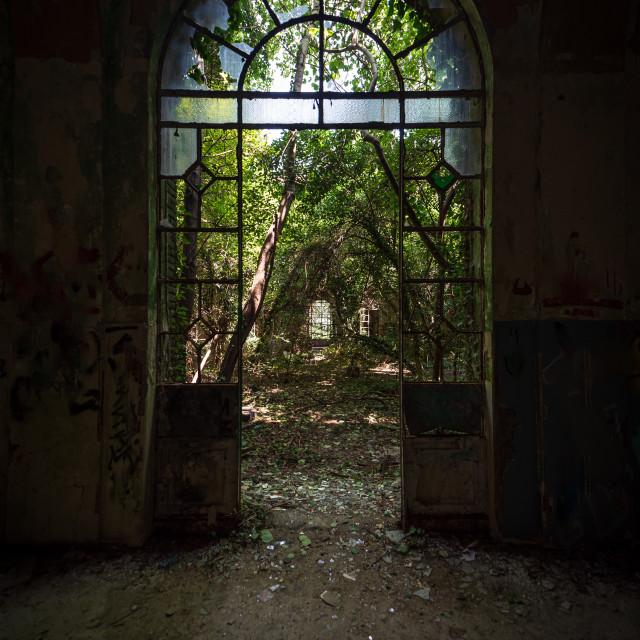 """Arched door with broken windows in an old dilapidated Italian bu"" stock image"