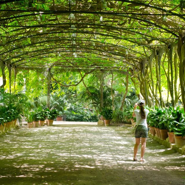 """Malaga Botanical Gardens"" stock image"