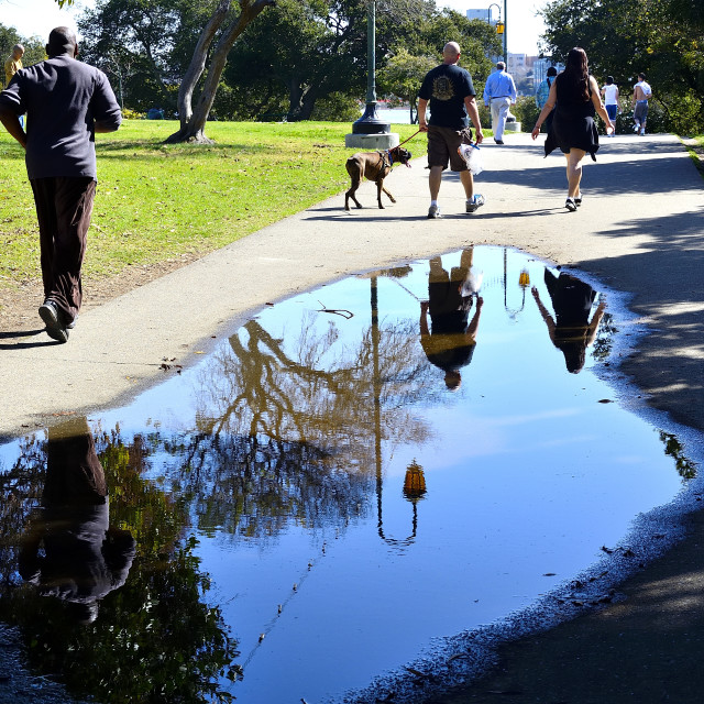 """""""Reflections in a puddle"""" stock image"""