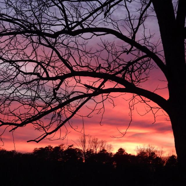 """Pastel Sunset"" stock image"