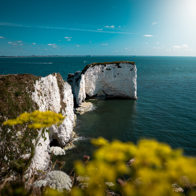 """""""Old Harry Rocks on a hot summer day"""" stock image"""