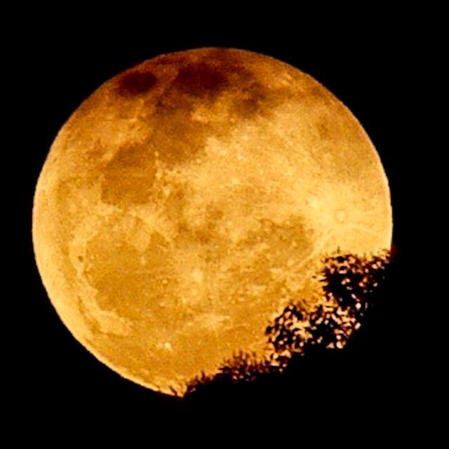 """Mystic Moon"" stock image"