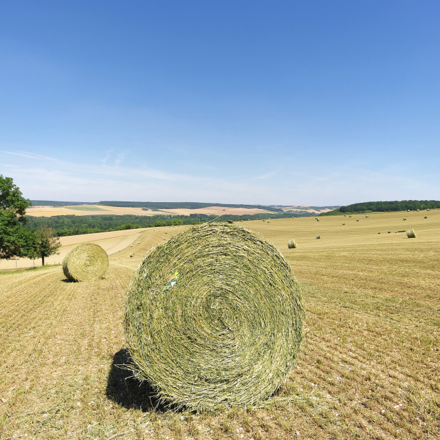 """Country land"" stock image"
