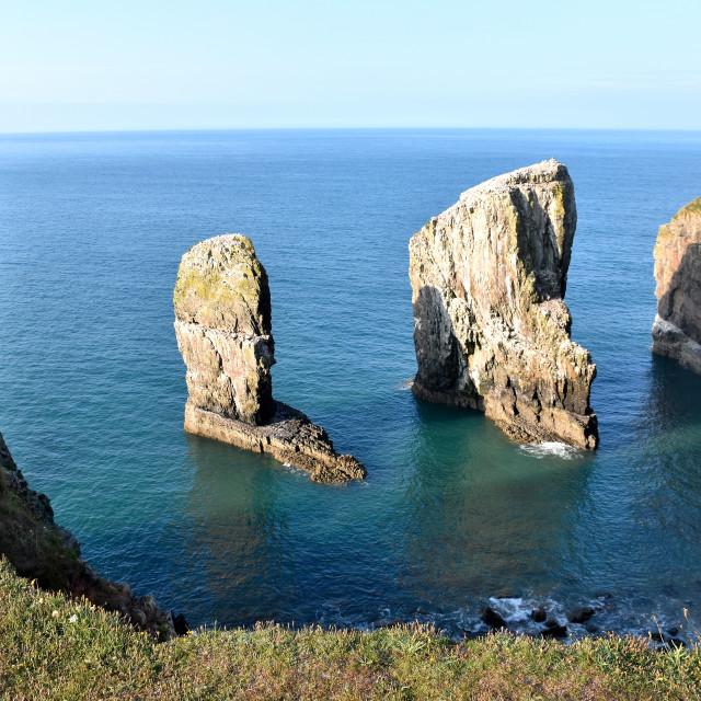 """""""Morning photo of Elegug Stack Rocks"""" stock image"""