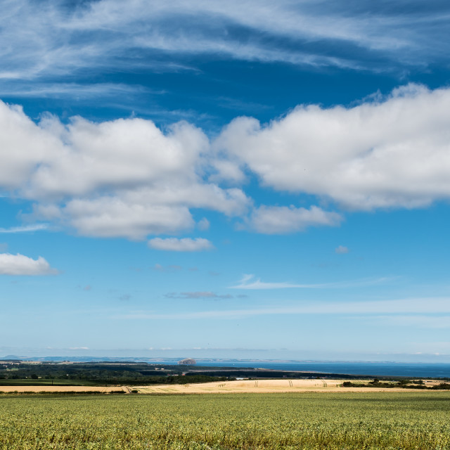 """""""East Lothian View"""" stock image"""