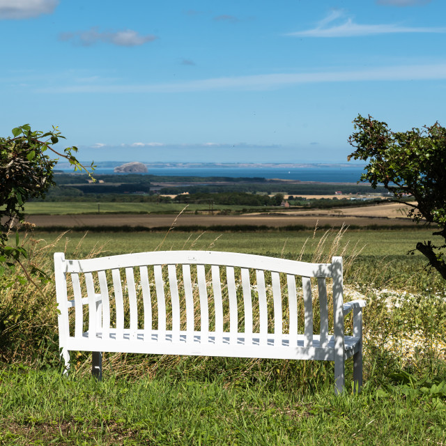 """""""A Pew with a View"""" stock image"""
