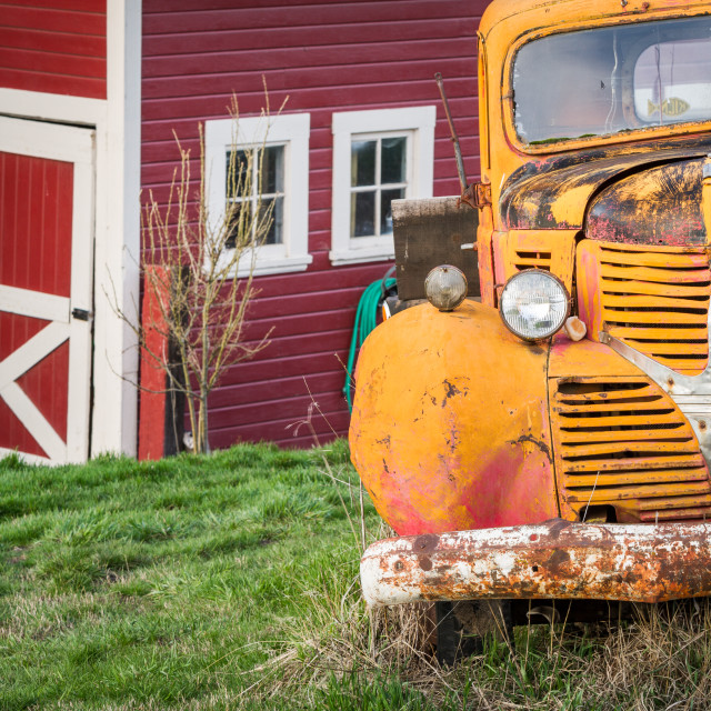 """Classic yellow truck in front of a red barn"" stock image"