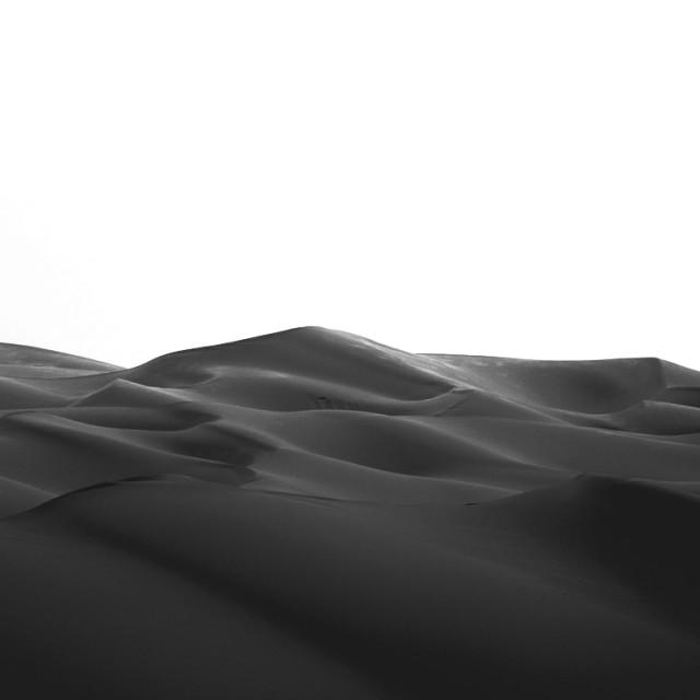 """""""Arabian Desert Beauty"""" stock image"""