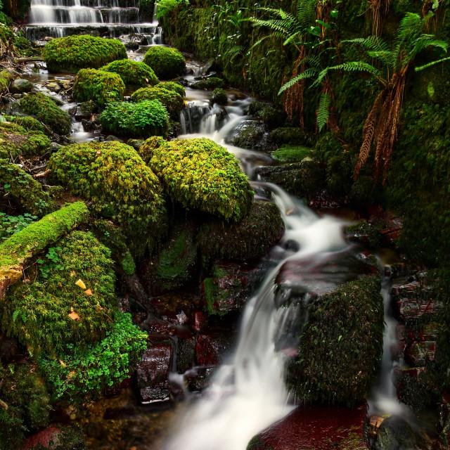 """Kilbroney Falls"" stock image"
