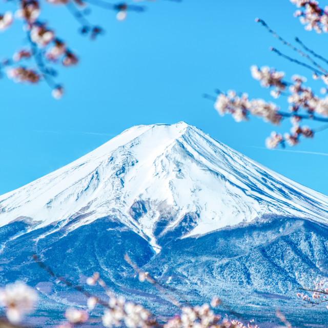 """Mount Fuji"" stock image"