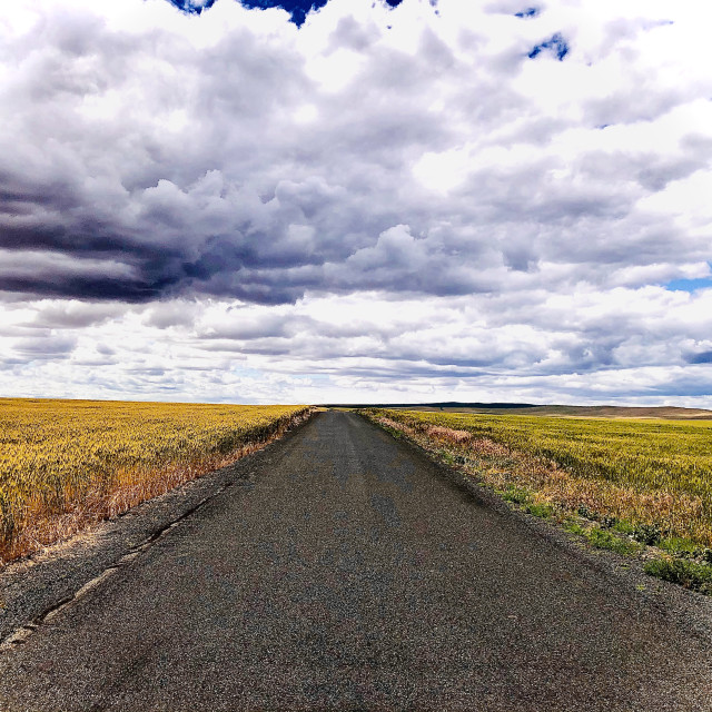 """""""Road and Sky"""" stock image"""