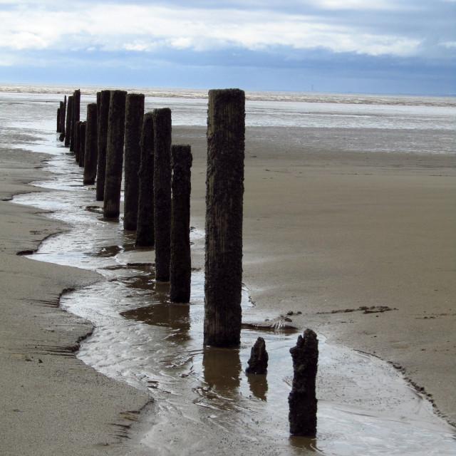 """Old wooden groynes at Berrow beach"" stock image"