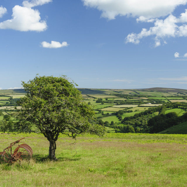 """Exmoor: view to Dunkery Beacon from Room Hill"" stock image"