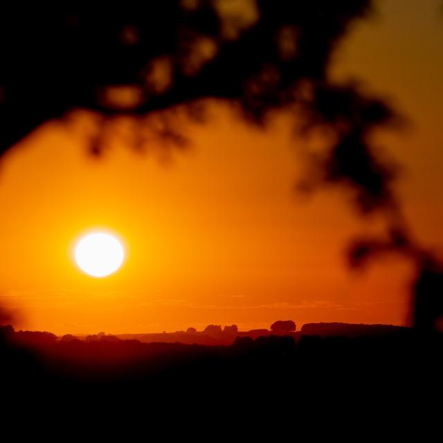 """Sunset Mist."" stock image"