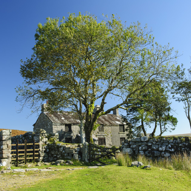 """Ditsworhty Warren House, Dartmoor"" stock image"