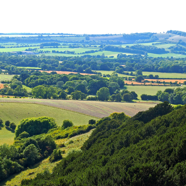 """""""The Meon Valley"""" stock image"""