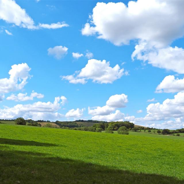 """Beacon Hill, Hampshire"" stock image"