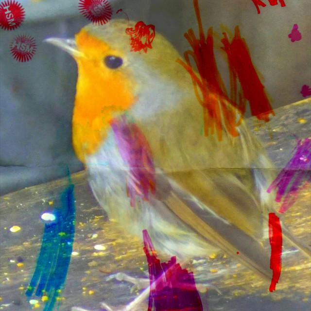 """Red Robin graffiti"" stock image"