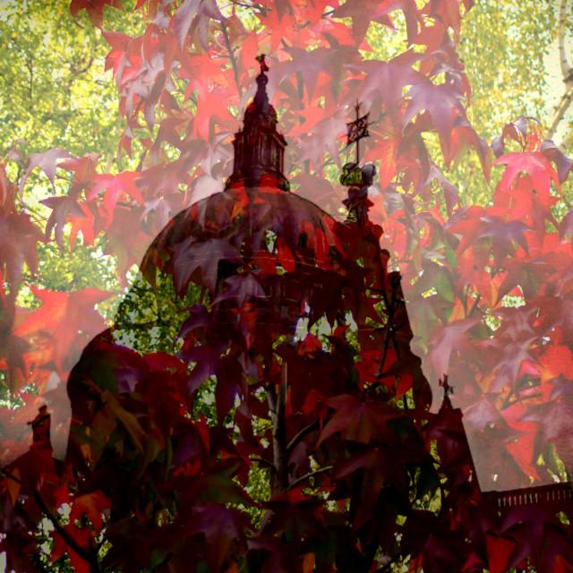"""""""Autumn St. Pauls"""" stock image"""