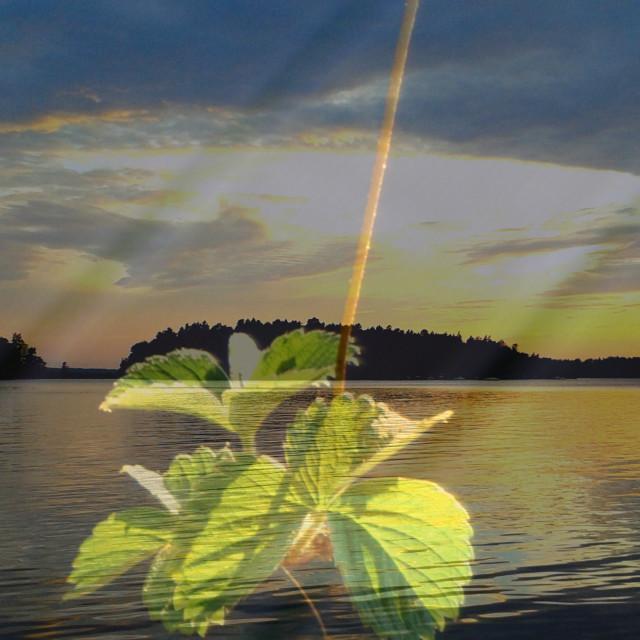 """Sunset over a small Swedish island"" stock image"