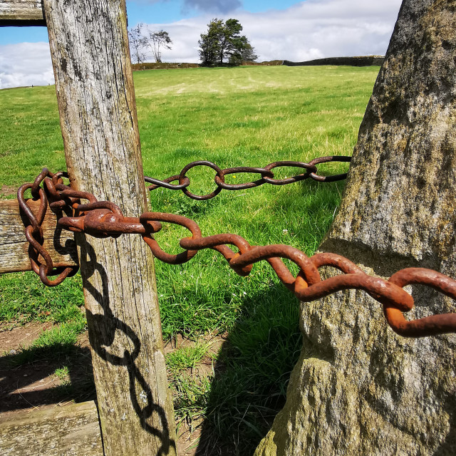 """""""Chained Gate"""" stock image"""