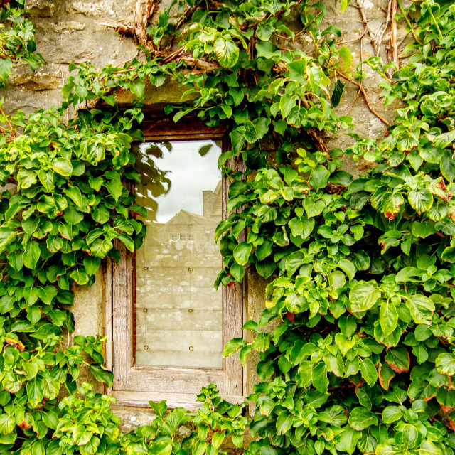 """""""Cottage Window Detail, Kettlewell, Yorkshire Dales."""" stock image"""