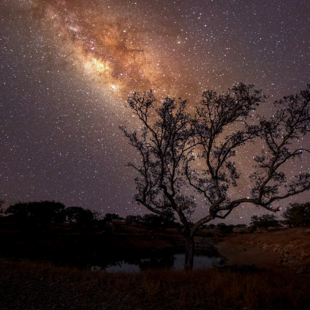 """Dead Cork - Milky Way"" stock image"