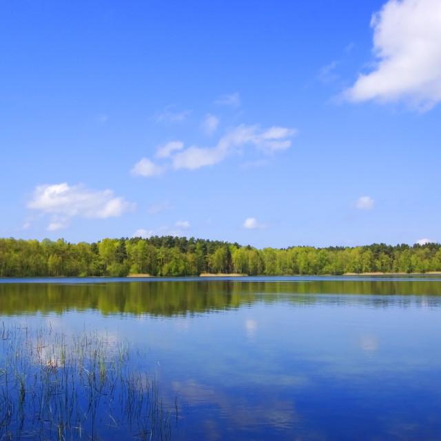 """Ukrainian Lake"" stock image"