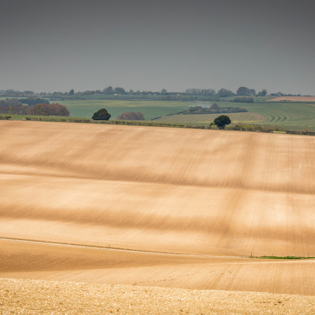 """english farming landscape in spring"" stock image"