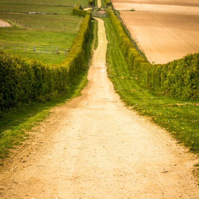 """Country roads"" stock image"