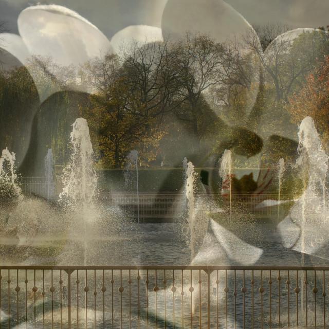 """Flower fountain"" stock image"