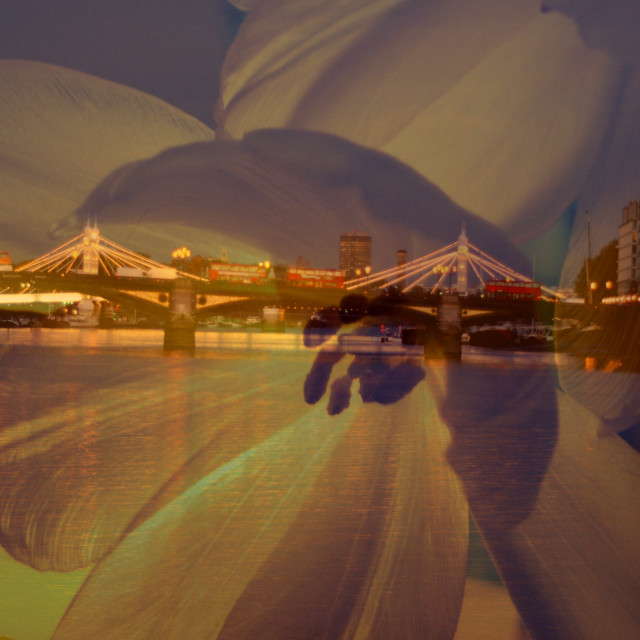 """Battersea & Albert bridge"" stock image"