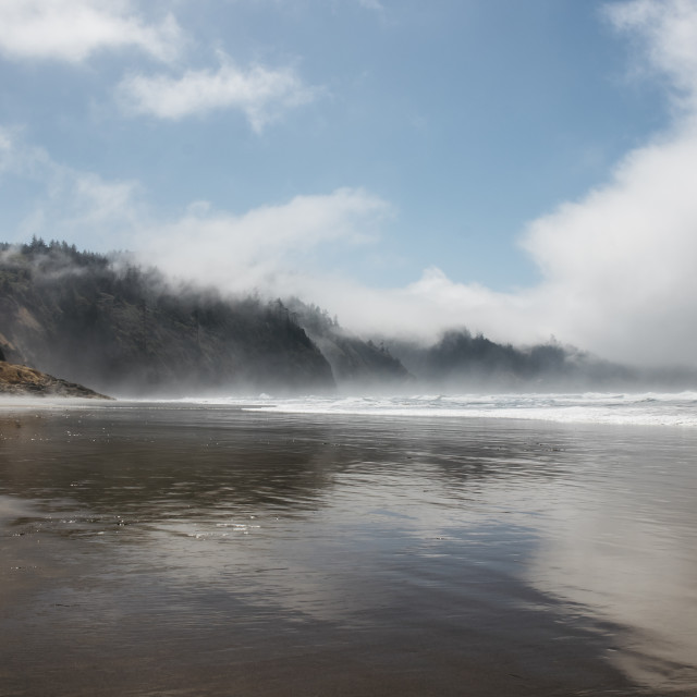 """""""Cape Lookout State Park"""" stock image"""