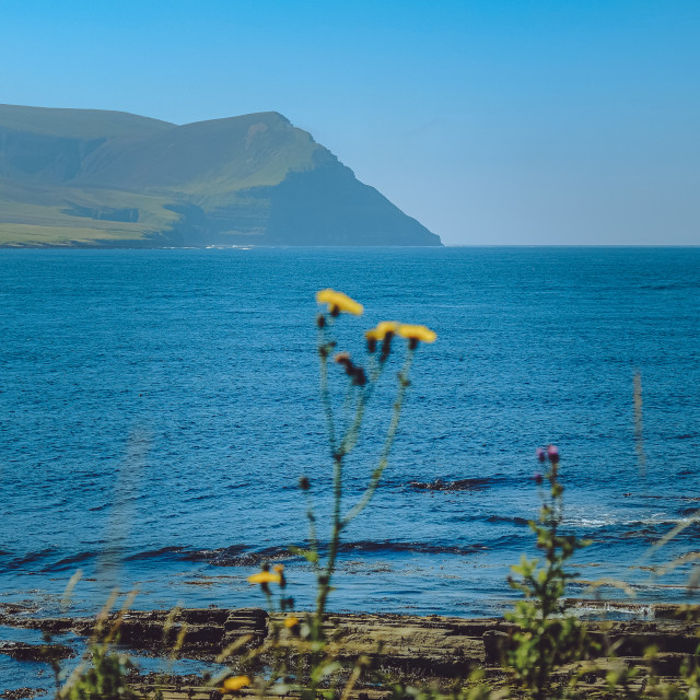 """""""View over Hoy Sound"""" stock image"""