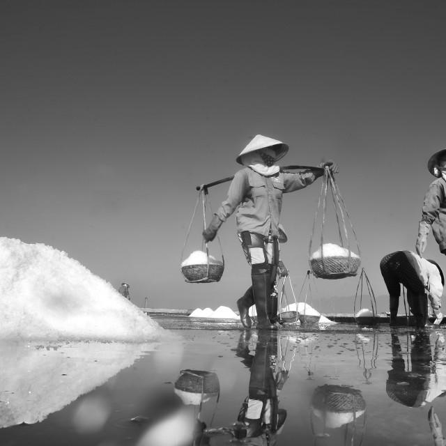 """ON THE SALT FIELD"" stock image"