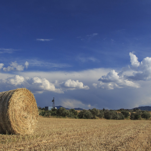 """""""Panoramic View Of Hay Bales On Autumn. Agricultural Landscape field"""" stock image"""