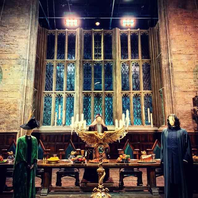 """Hogwarts Teachers"" stock image"